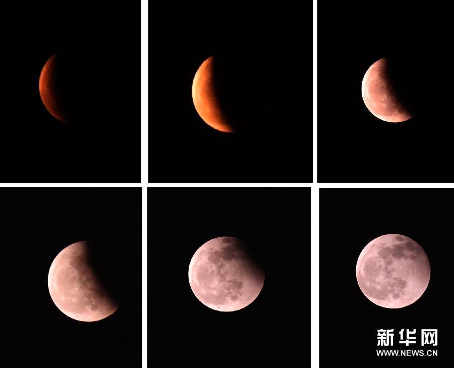 """美丽""""红月亮"""" 新华网上海频道新闻"""