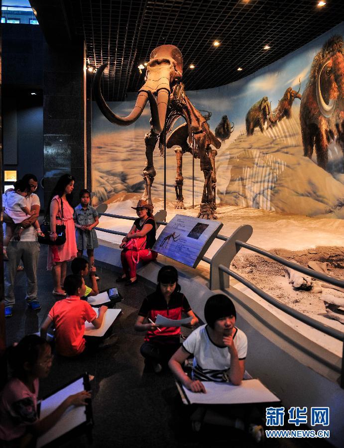 5月31日,孩子们在内蒙古博物院展馆中绘画写生.新华社发(连振摄)