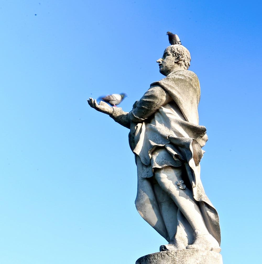 天空之城曲谱 李志-帕多瓦位于意大利北部威尼托大区,距威尼斯约30公里,是一座文艺复
