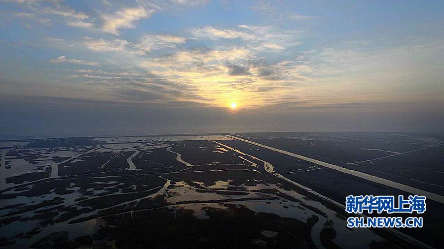 1月1日清晨,上海市崇明岛东滩湿地被阳光笼罩,上海迎来2016新年第一缕