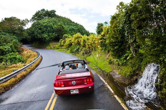 茂宜岛东部的哈纳公路蜿蜒曲折,路面狭窄,公路上有将近600个弯道和