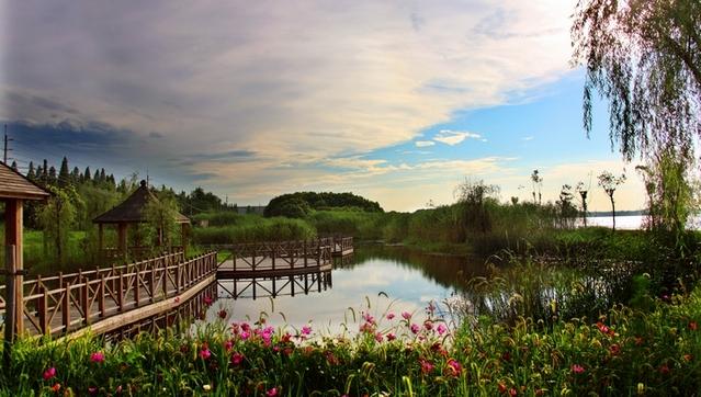 湖心岛上青枫婀娜,湖畔边柳叶拂水,夕阳西下的时候,整个水面都是波光