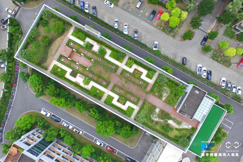 上海外国语大学尚阳外国语学校教学楼顶部的屋顶花园