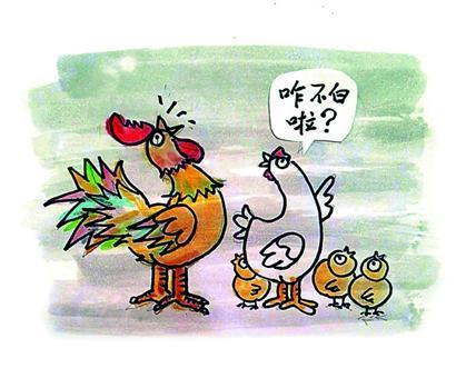 谢的笔画顺序-  吉祥如意一笔顺 郑辛遥   鹰守鸡舍 天呈   《——太阳是我唱出来的…