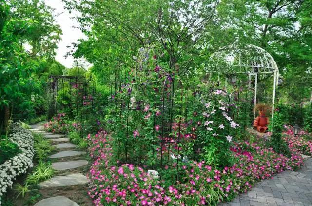 园艺植物手绘平面图