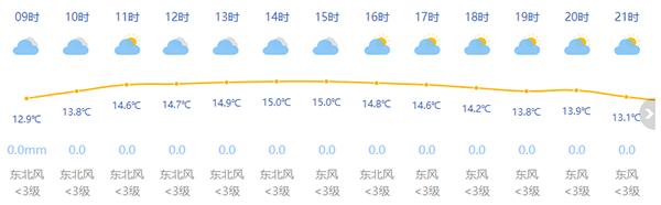 双休日天气给力!上海下周冲击20