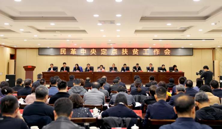 苏宁环球董事长张桂平出席民革中