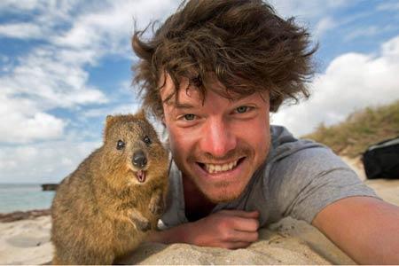 爱尔兰小伙与各种动物微笑合影 欢乐互动